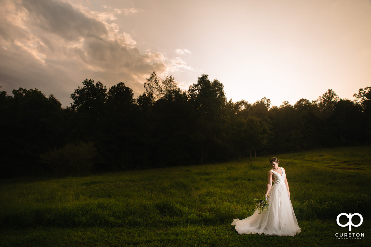 Bride holding her flowers in a field during a sunset bridal session in Greer,SC.