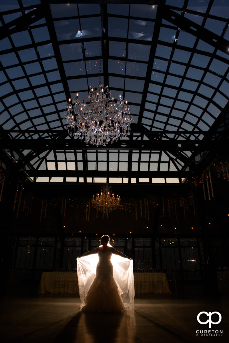 Backlit photo of a bride underneath the glass ceiling at Edinburgh West.