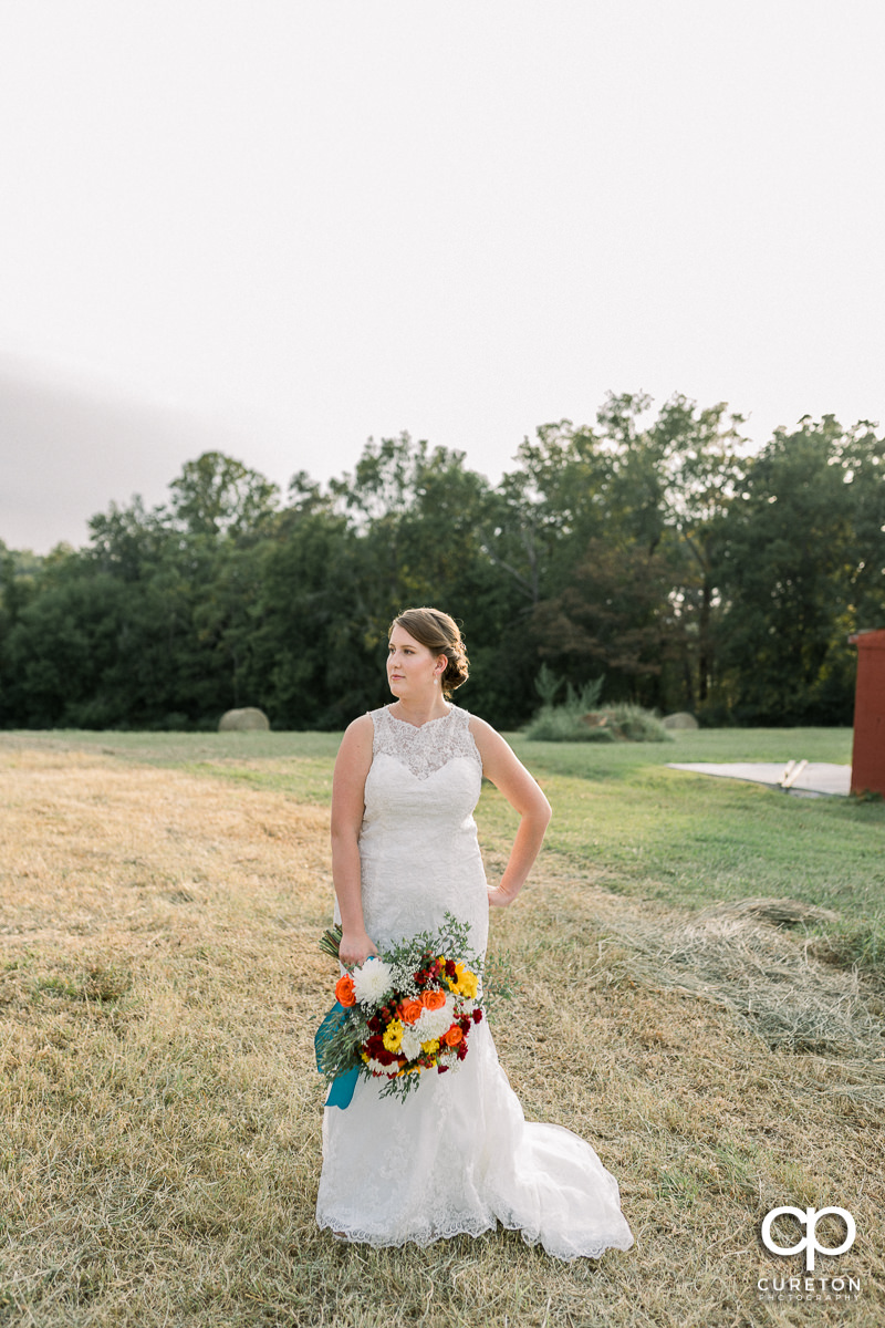 Bride posing in her dress out in a farm field.
