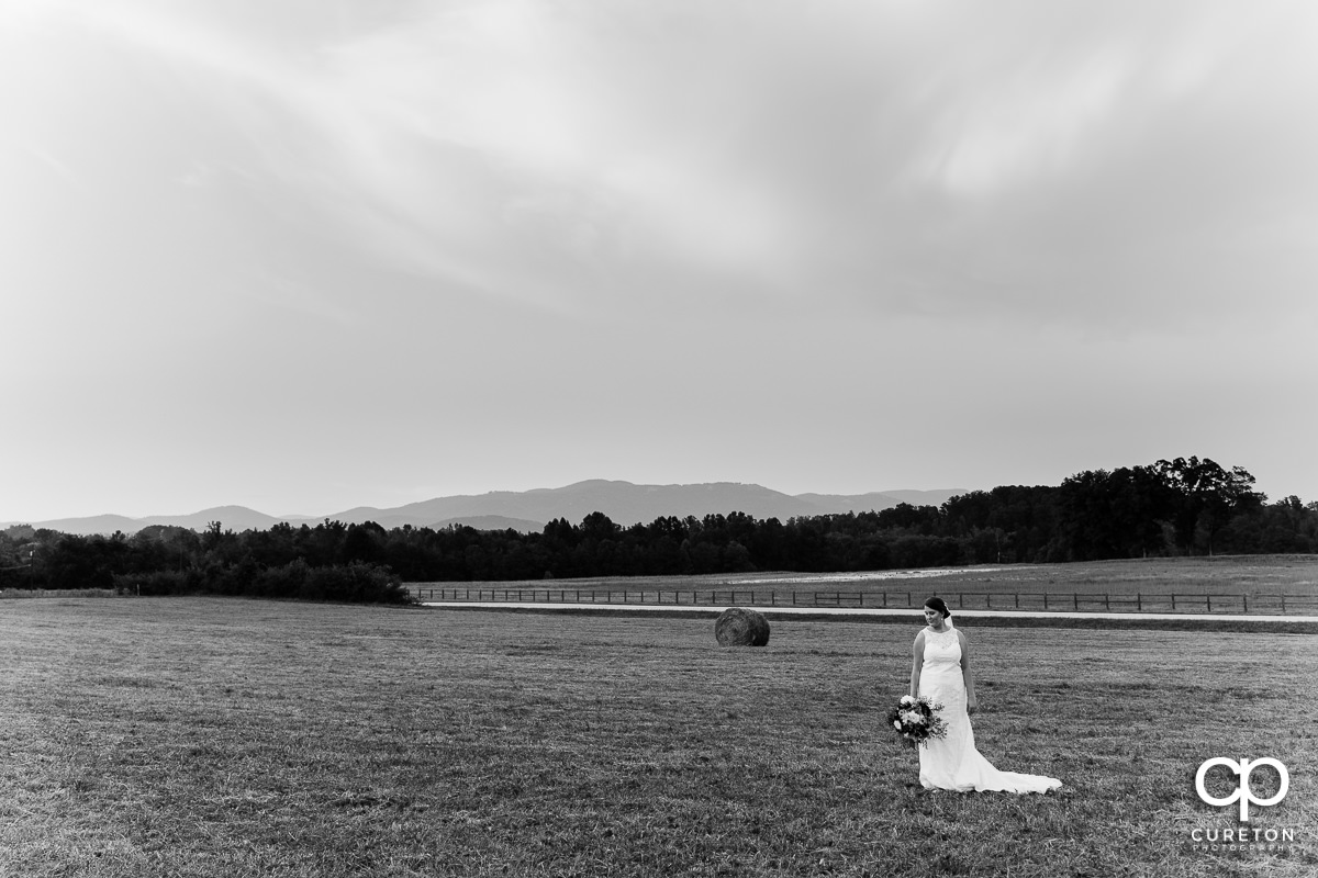 Black and white photo of a bride on a farm in rural South Carolina.