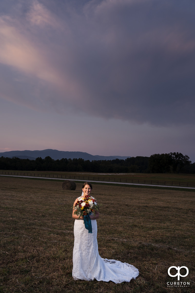 Bride in a field at sunset facing Glassy Mountain.