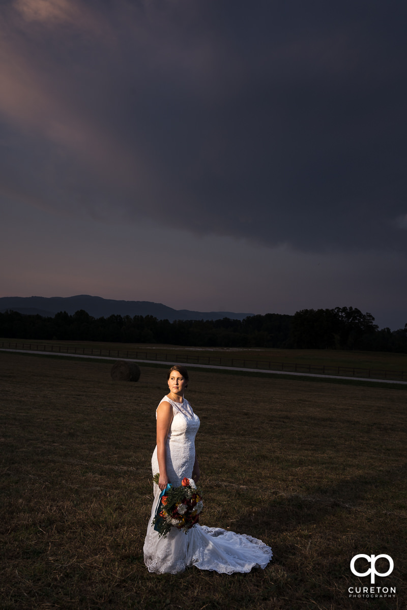 Bride facing the mountains at sunset in a field at Famoda Farms.