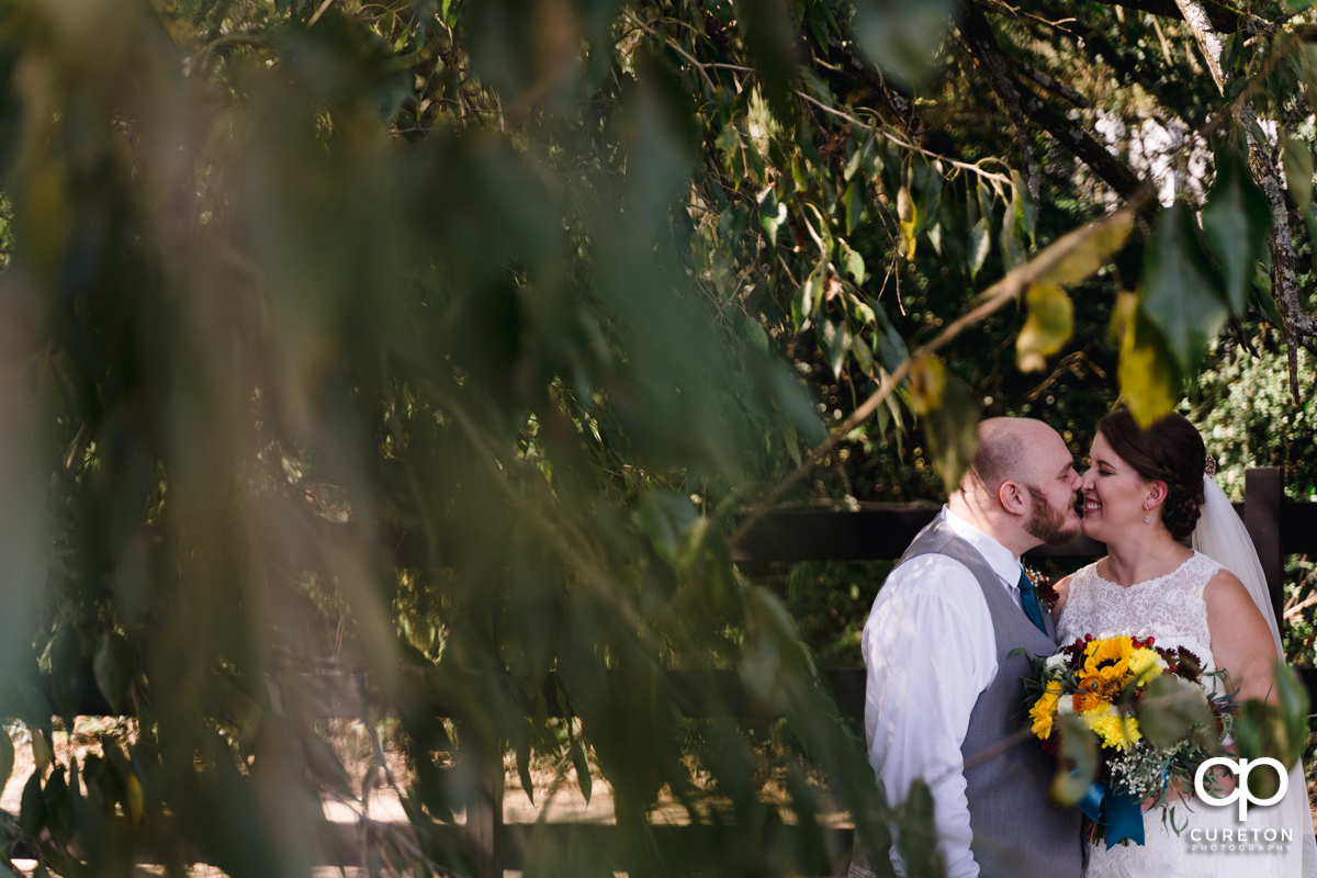 Bride and groom eskimo kissing underneath a tree.