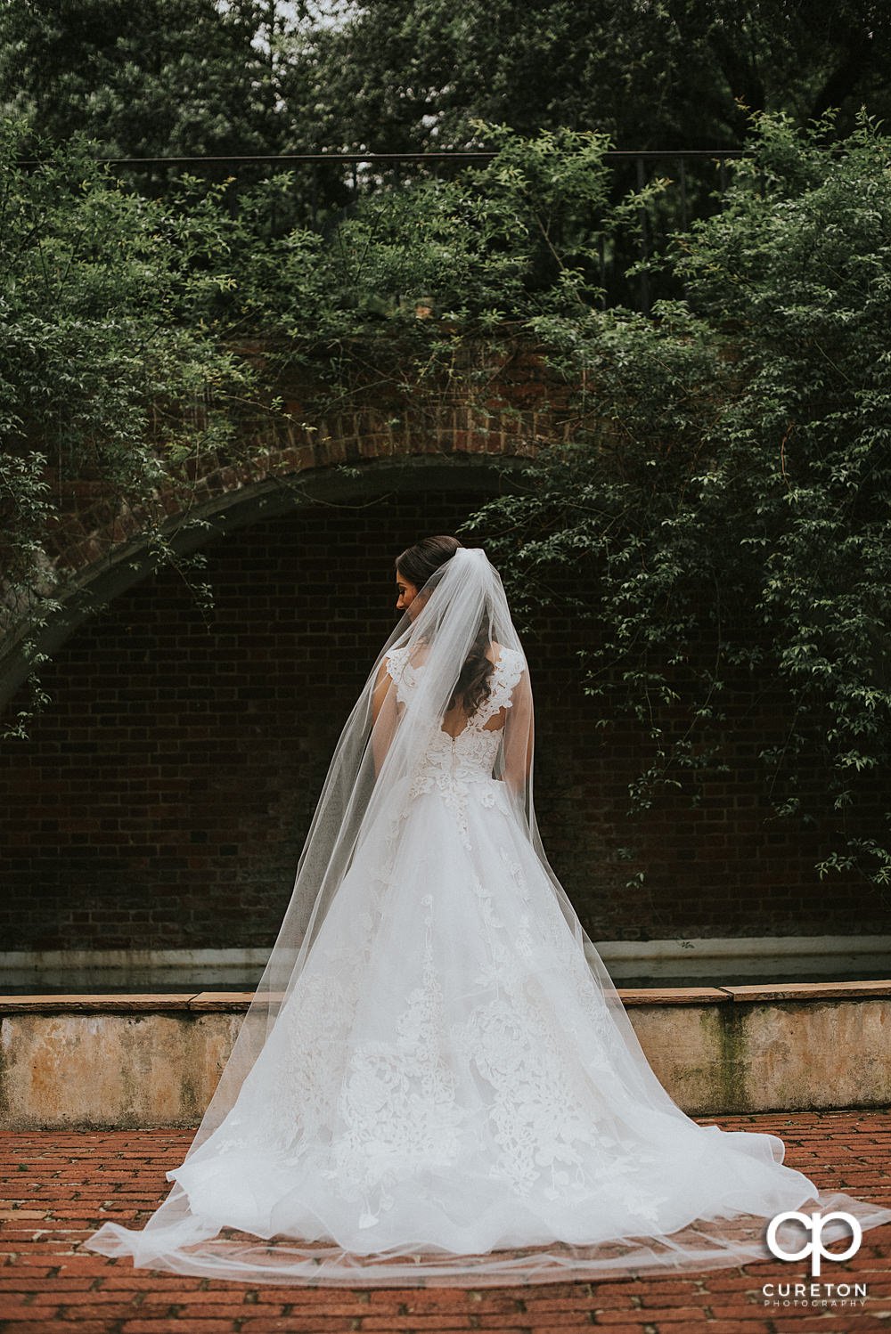 Bride with long veil blowing in the wind showing the back of teh dress in the rose garden at Furman University.