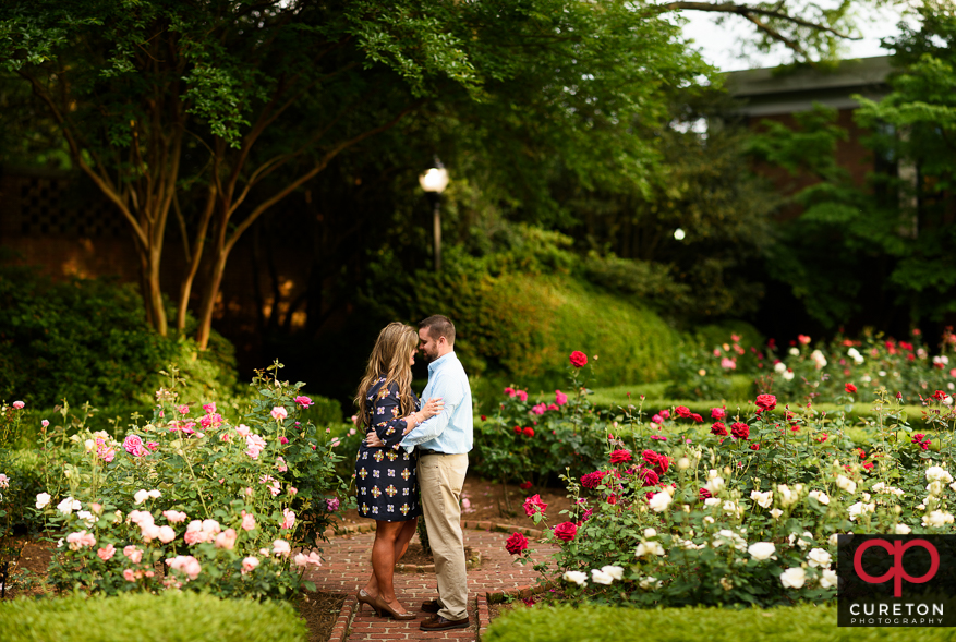 Couple cuddling during their Furman rose garden engagement session.