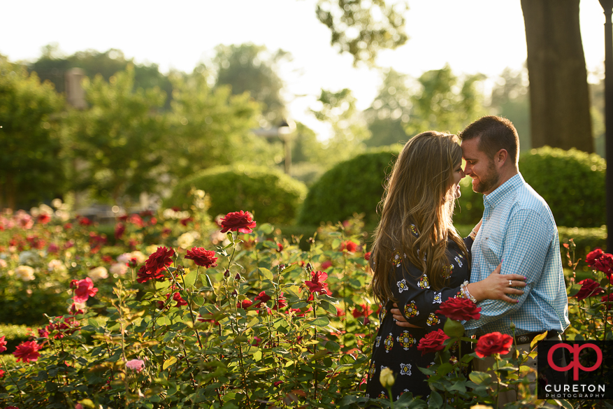 Engaged couple in the middle of the rose garden at Furman.
