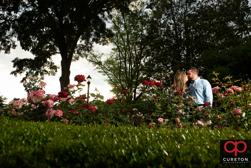 Enhgade couple surrounded by roses.