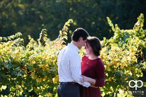 Engaged couple in the vineyard at Greenbrier Farms.