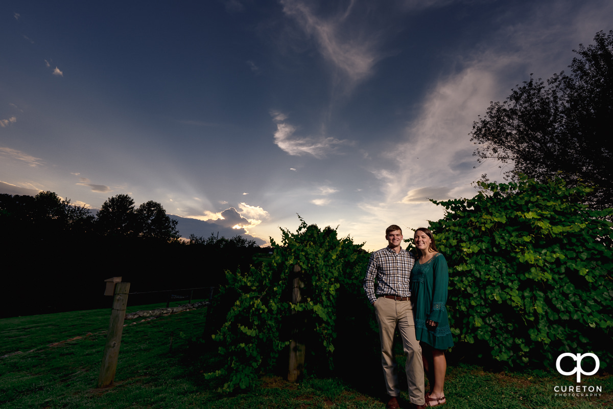 Bride and groom in a vineyard at sunset during their engagement session at Greenbrier Farms in Easley,SC.