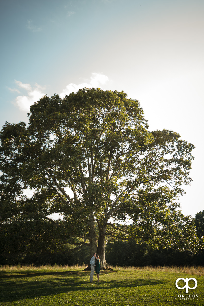 Engaged couple standing in front of a huge oak tree during their engagement session at Greenbrier Farms in Easley,SC.