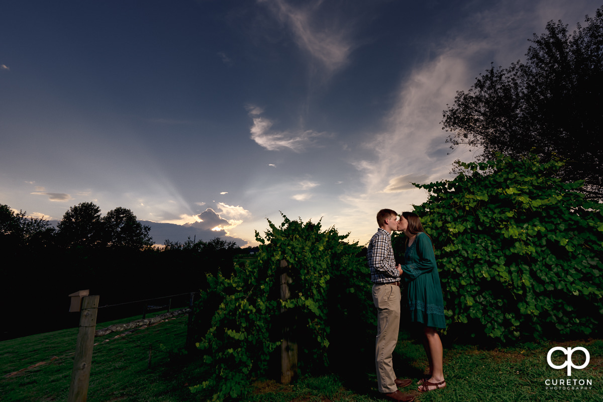 Future bride and groom sharing a kiss in the vineyard at Greenbrier Farms in Easley,SC.