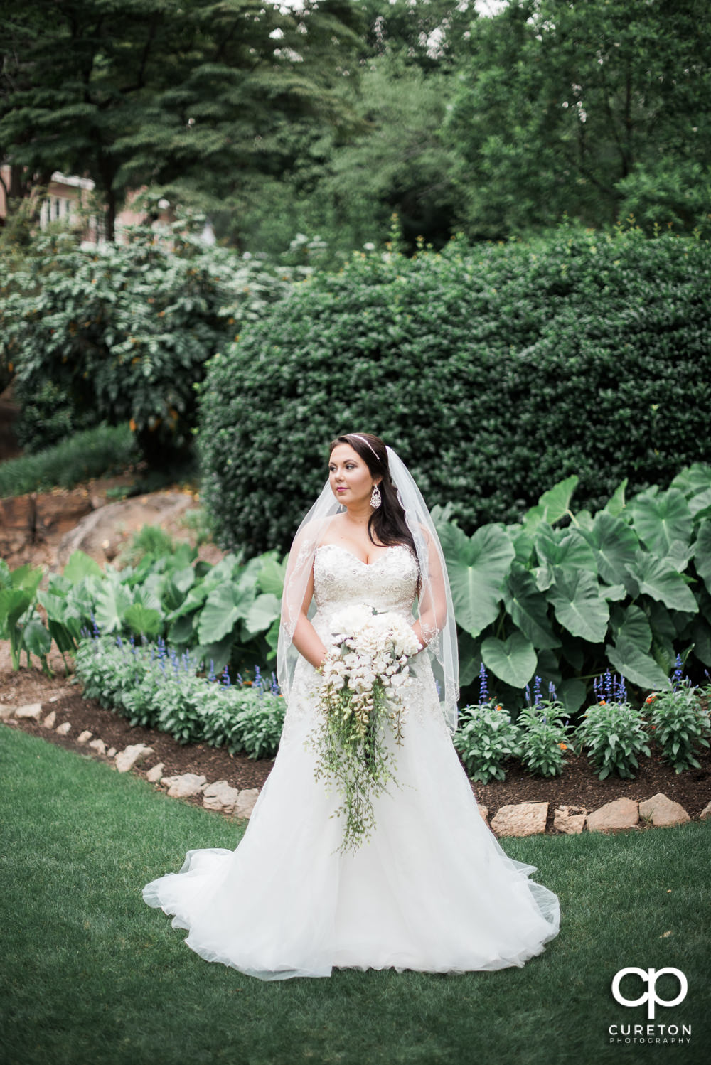 Light and airy bridal portrait in the rock quarry garden in Greenville.