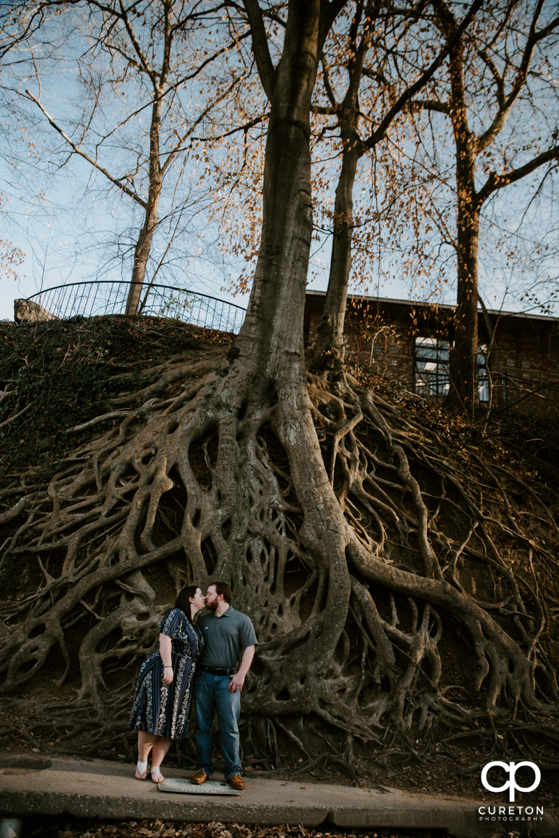 Engaged couple kissing in front of a huge tree root during a Greenville,SC park engagement session.