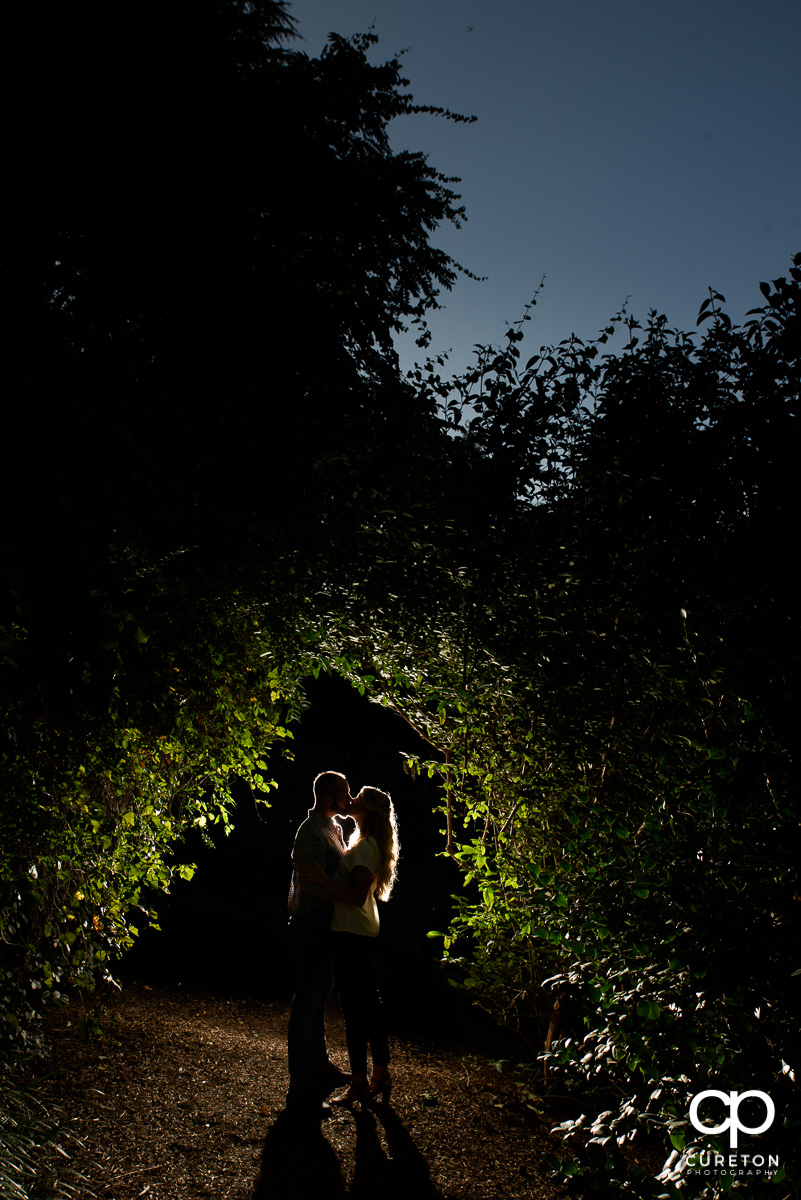 Engaged couple kissing underneath some backlit greenery during their engagement session at The Rock Quarry Garden in Greenville,SC.