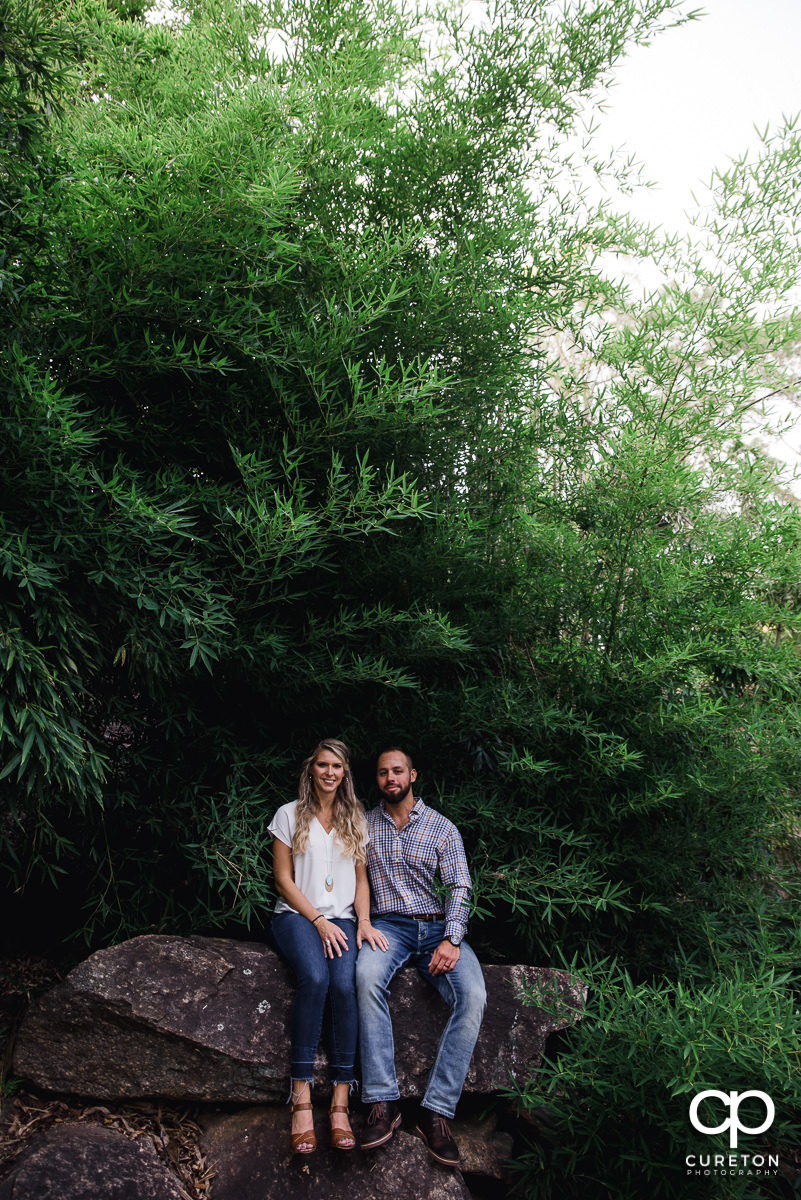 Future bride and groom sitting on a rock in The Rock Quarry Garden in Greenville.