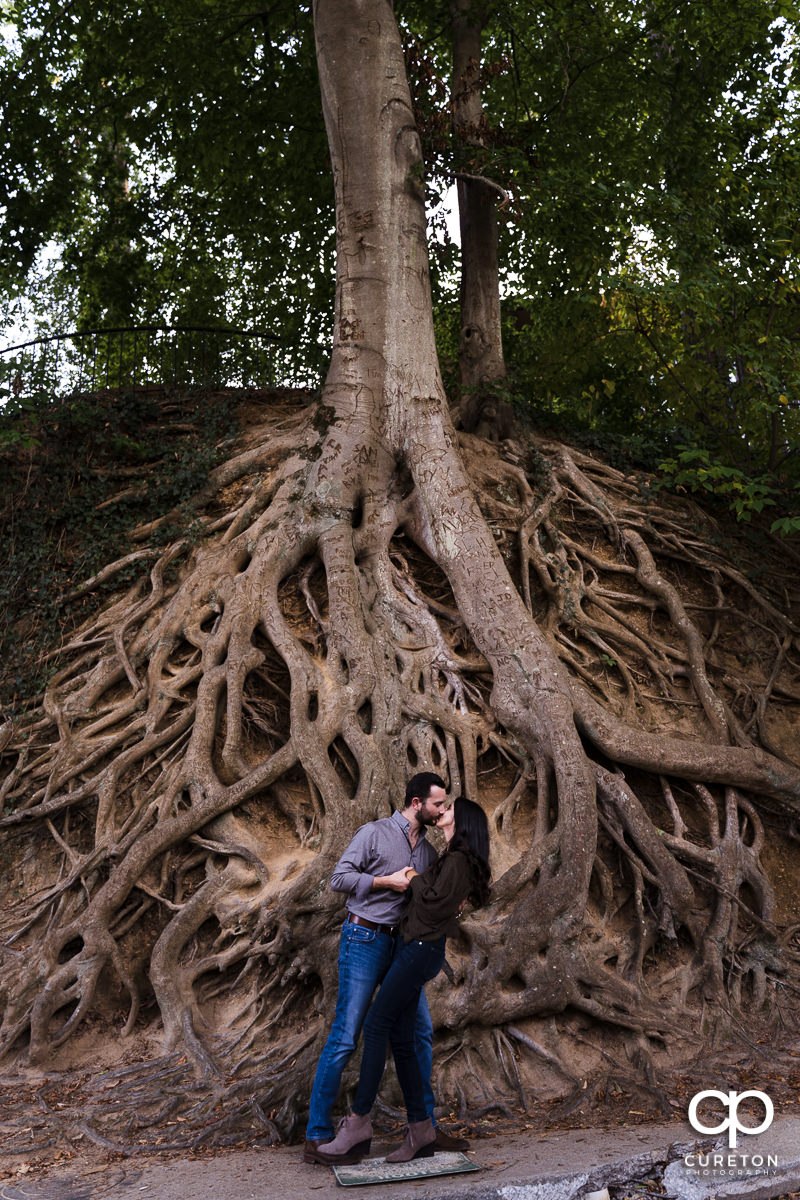 Engaged couple kissing in front of the famous roots tree at Falls Park during their engagement session in Greenville.