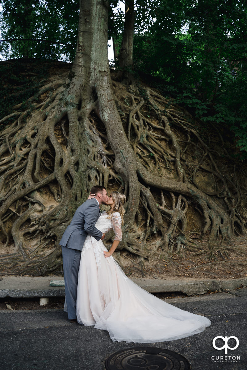 Groom kissing his bride in front of the roots tree in Falls Park after their wedding.