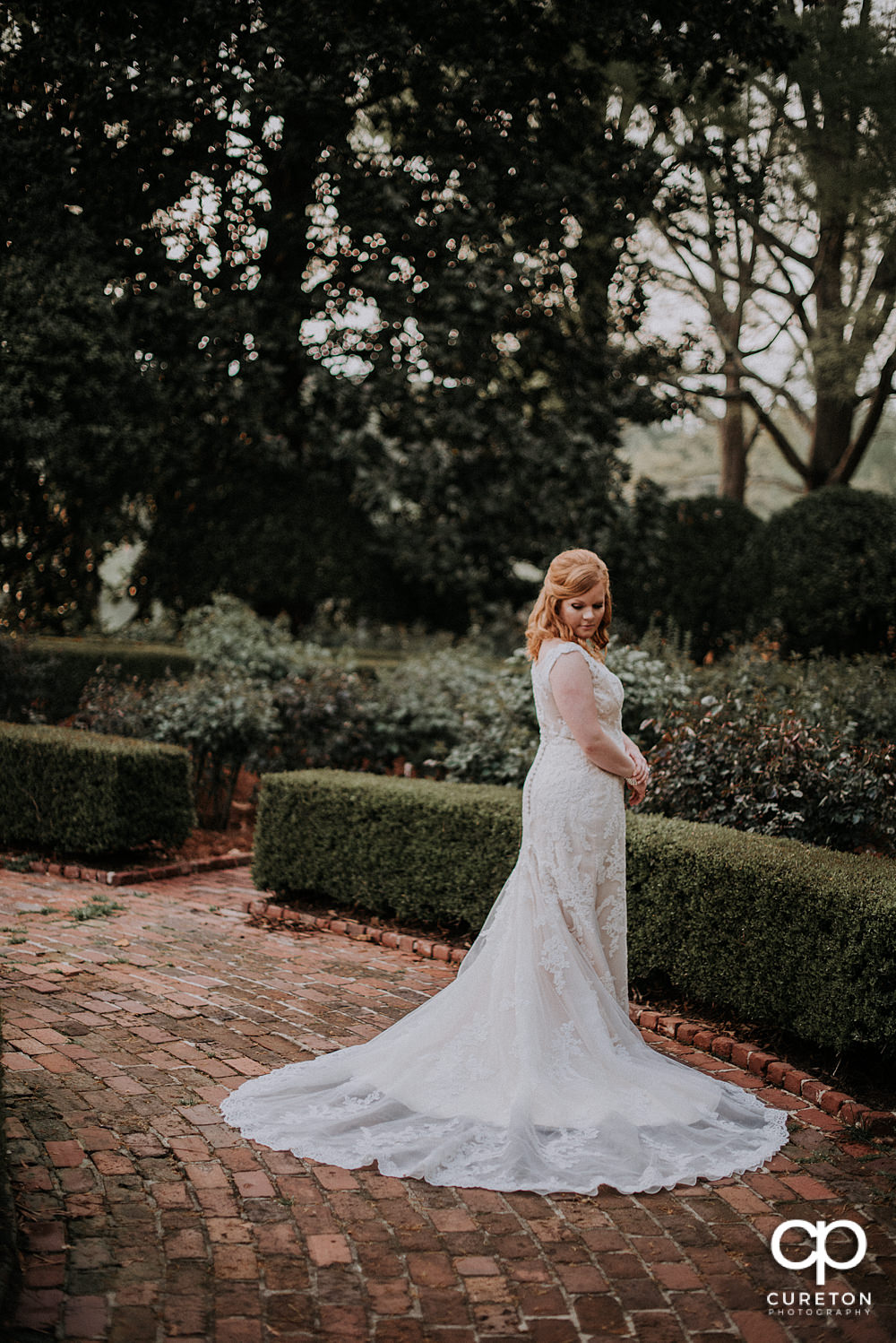 Epic shot of a bride in the rose garden at Furman campus.