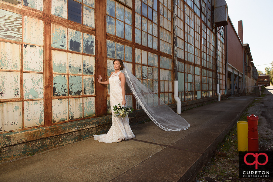 Bride with er veil blowing in the breeze during a Tayolors Mill bridal session.