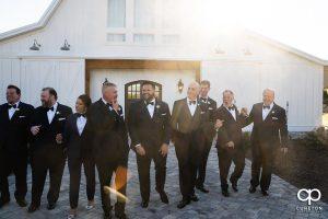 Groom and groomsmen standing in warm sunlight.