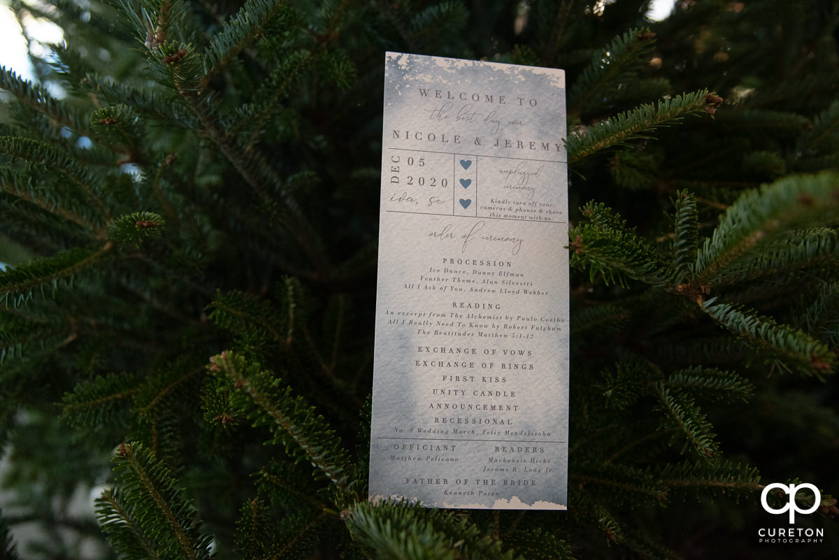 Wedding program in a Christmas tree.