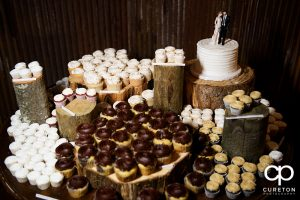 Beautiful cupcake display by Holly's cakes.