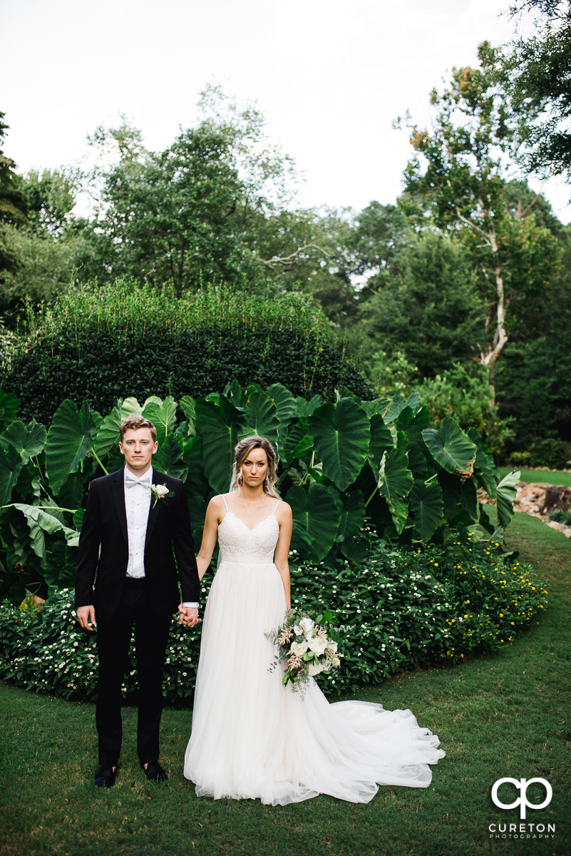 Bride and groom in front of an elephant ear tree.